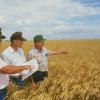 Blending Organic & Conventional Farming