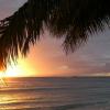 Visitors Return To Hawaii