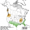 Weak El Nino Forecast Changes Wet Winter Outlook
