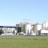 Greener Pastures For BioFuel