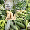 Demand Up For Asian Veggies