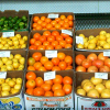 USDA Providing $1 million to Jump Start Citrus Response Framework