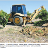 Ongoing Water Crisis Takes Toll On Citrus