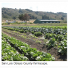 San Luis Obispo County Local Food Roots Are Strong, Can Support Growth