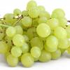 Ag Beat: Corn / Grapes / Lemons / Frozen Food