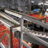 DESPITE DROUGHT – 2014 PROCESSING TOMATO PRODUCTION AT RECORD HIGH