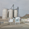 Central Valley Biz News : Tulare Mill Will Shut Down