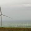 Google Buying Wind Power