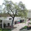 City Of Visalia Seeks Deal On New Downtown Hotel