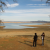 DROUGHT COSTS CALIFORNIA AGRICULTURE $1.84B AND 10,100 JOBS IN 2015