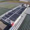 REC Solar and Windset Farms Flip the Switch on 1 MW SOLAR ARRAY