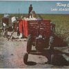 In Tulare / Kings – Cotton No Longer King