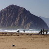 Morro Bay Talking To Wave Energy Firm