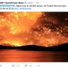 Tree Deaths Fan Fear Of Sierra Firestorm