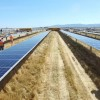 Plans For More Big Solar Farms