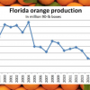 California Citrus Crop Tops Florida In 2017