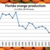 California Citrus Crop Tops Florida In 2017