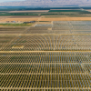 Siempra Acquires Fresno Solar Project From Recurrent Energy
