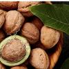 Walnut Prices Remain Under $1
