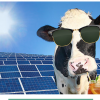 Challenge Dairy Refrigerated Truck Uses Solar To Keep Cool / 100 Solar Dairies
